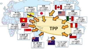 TPP 参加国