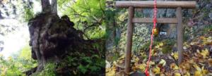 大山祇神社「奥の院」