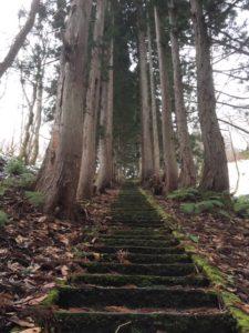 大山祇神社「202段の階段」