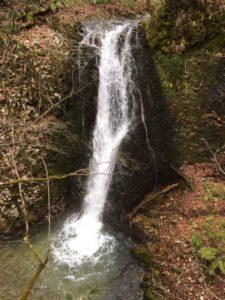 大山祗神社の滝