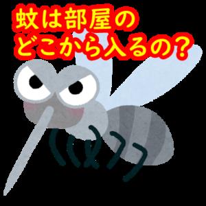 蚊は部屋のどこから入るの?